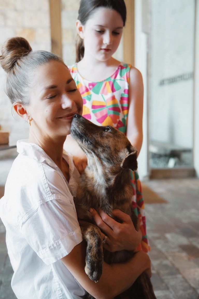 How to volunteer at an animal shelter
