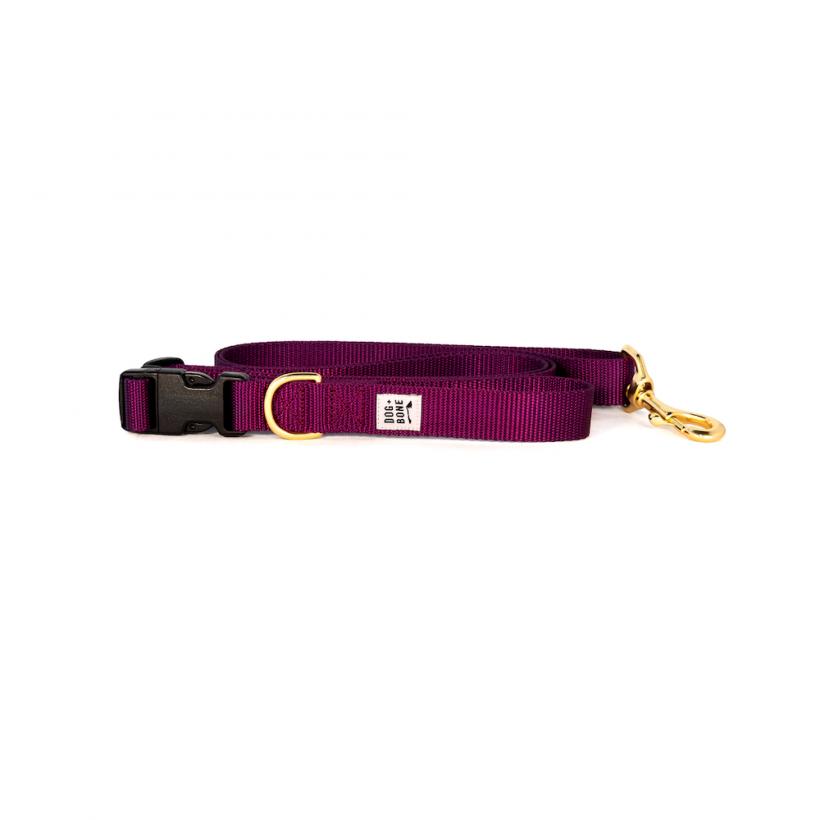 Leash_Adjustable_Purple_1_2048_1400x