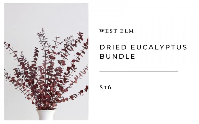 west elm dried eucalyptus branch