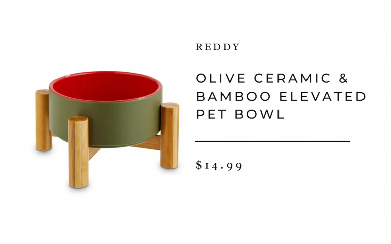 Reddy Olive Ceramic & Bamboo Elevated Pet Bowl