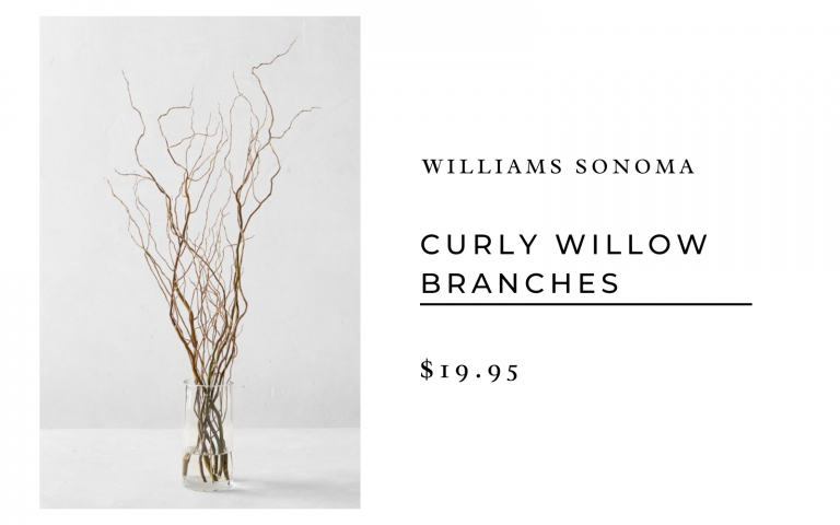 Williams Sonoma Curly Willow Branches