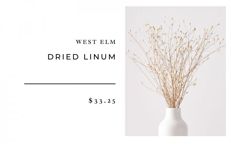 West Elm Dried Linum