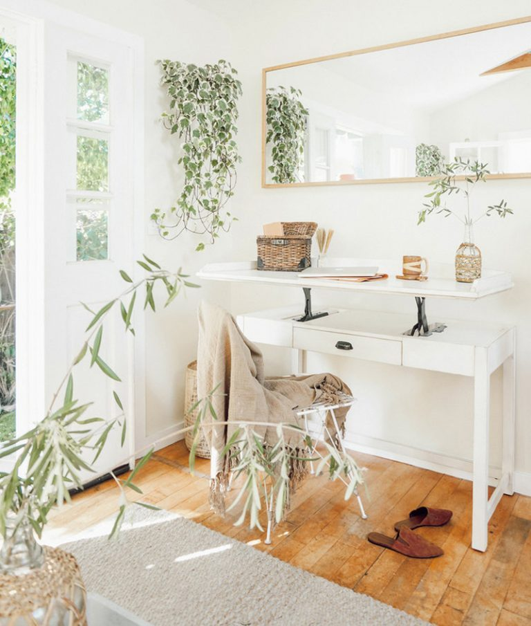 house plants in home office