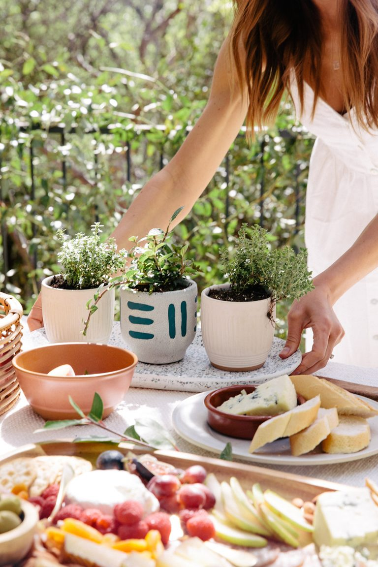 Camille Styles, DIY potted herbs in backyard party