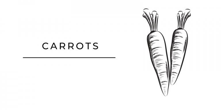 Seasonal Produce Carrots