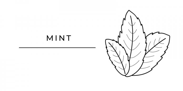 Seasonal Produce Mint
