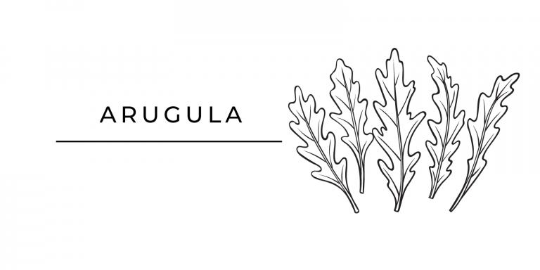 Seasonal Produce Arugula