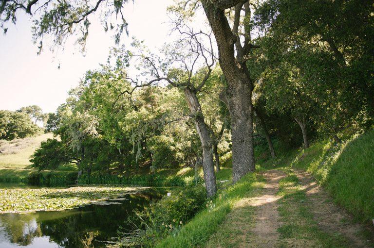 hike a new trail - summer bucket list ideas