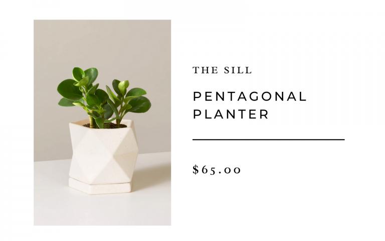 the sill pentagonal planter