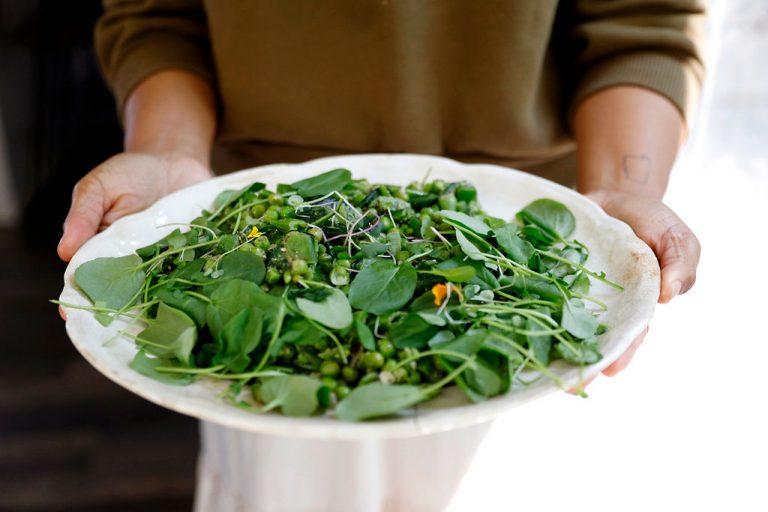 Pea salad with mint and microgreens