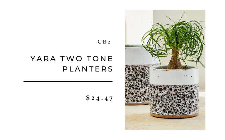 CB2 Yara two-tone planters