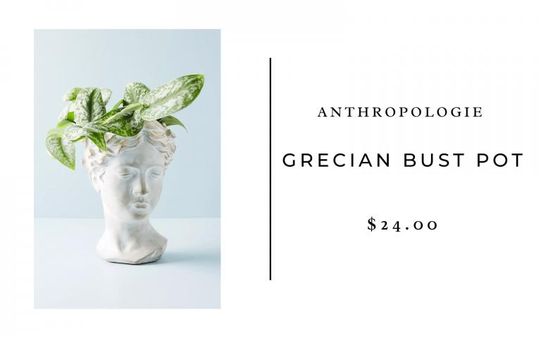 anthropologie grecian bust pot