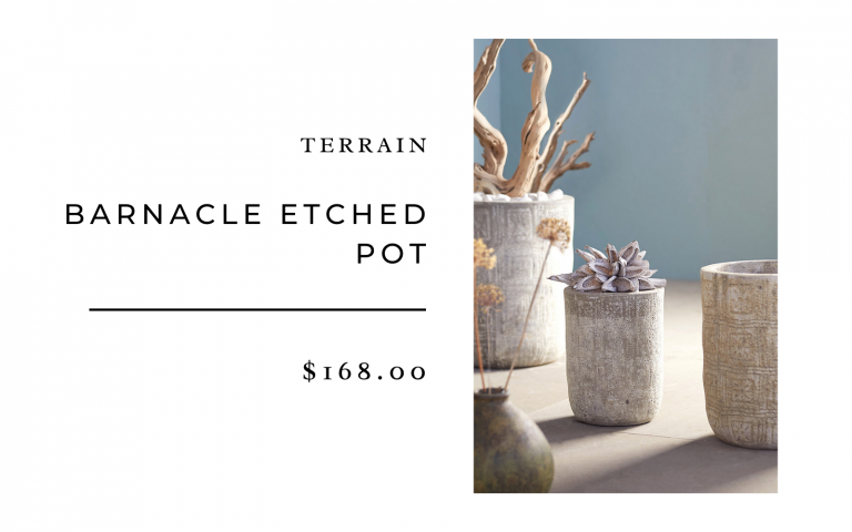 terrain barnacle etched pot