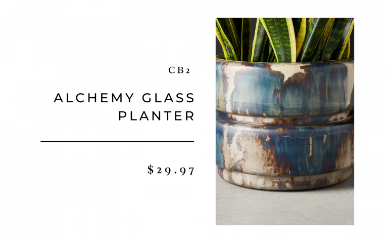 cb2 alchemy glass planter