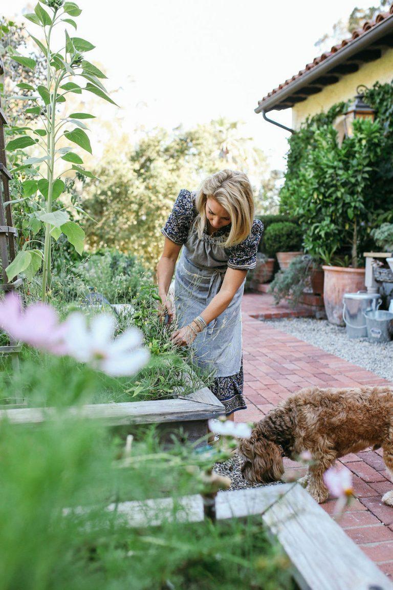 Valerie Rice dinner party in Santa Barbara, garden