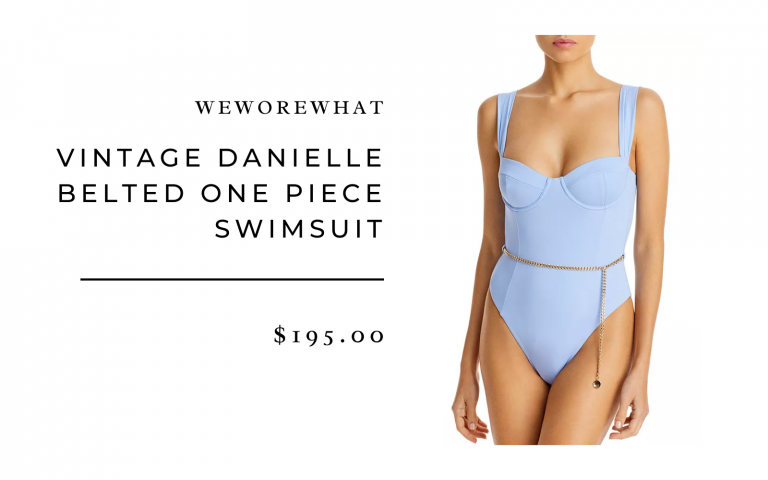 Onia x WeWoreWhat Danielle One-Piece Swimsuit