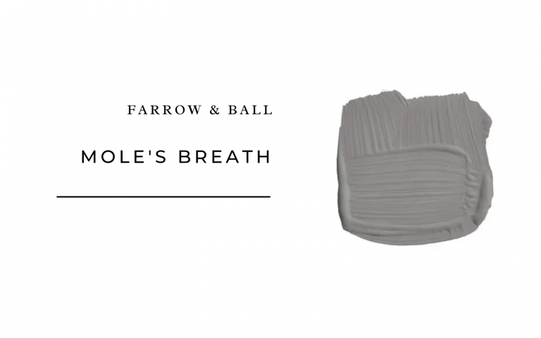 farrow & Ball Mole's Breath