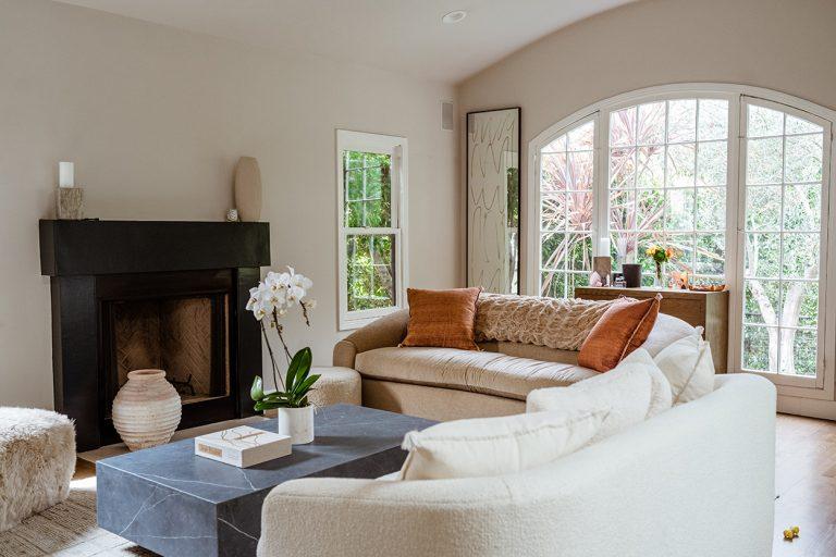 modern living room_liana levi