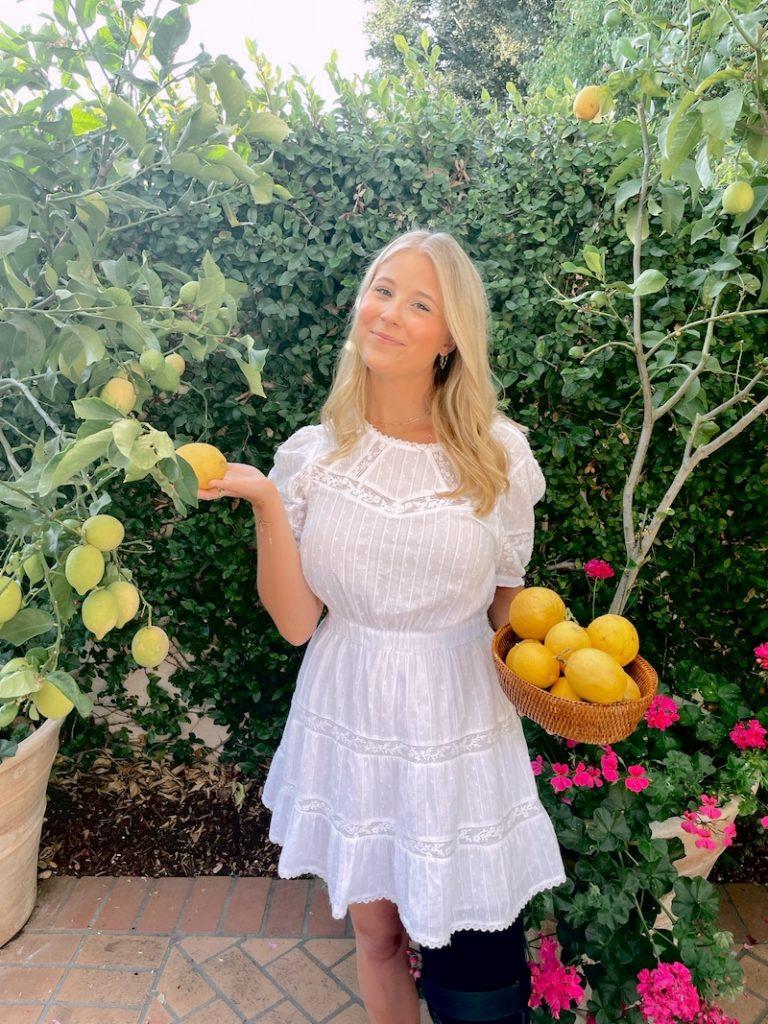 bridget chambers lemons
