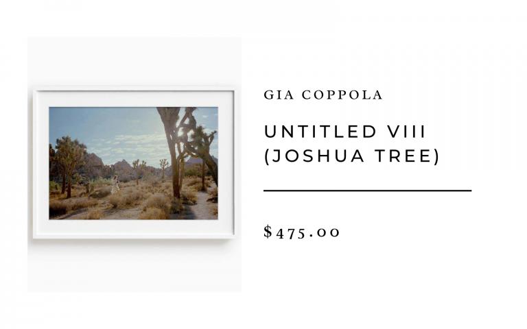untitled joshua tree